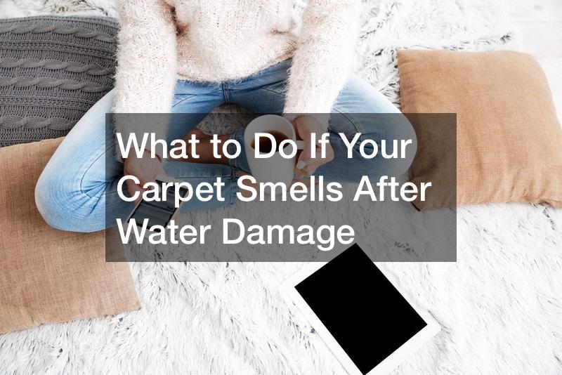 carpet smells after water damage
